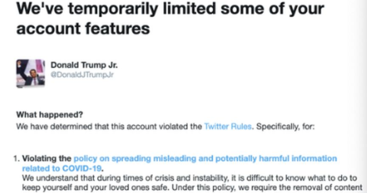 Donald Trump Jr Suspended On Twitter